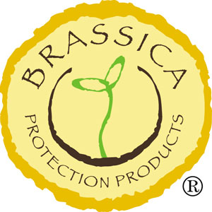 Connell Brothers' Asian Offices - Brassica Protection Products